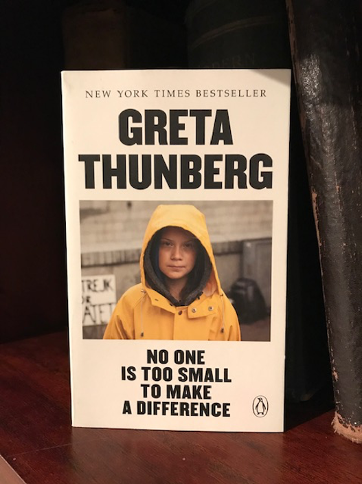 Greta Thunberg's book No One Is Too Small To Make A Difference